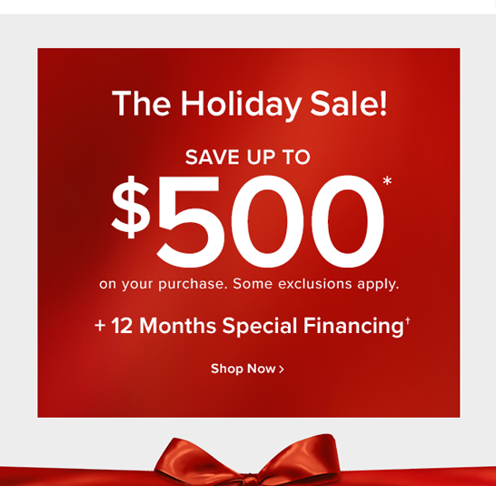 The holiday sale! save up to $500 on your purchases. some exclusions apply. + 12 months special financing shop now