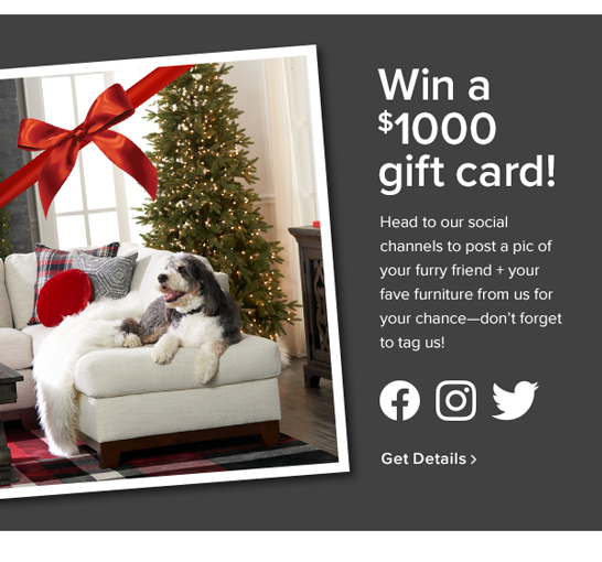 Win a $1000 gift card! Head to our social channels to post a pic of your furry friend + your fave furniture from us for your chance-don't forget to tag us. get details
