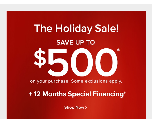 The holiday sale! save up to $500 off on your purchase. Some exclusions apply. +12 months special financing shop now