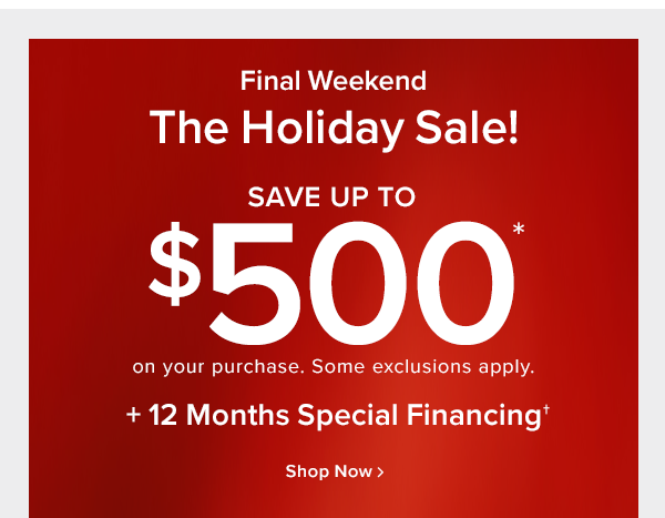 Final Weekend The holiday sale! save up to $500 off on your purchase. Some exclusions apply. +12 months special financing shop now