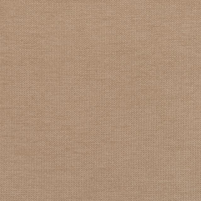 camel-color-swatch