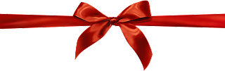 gift wrapper ribbon decoration