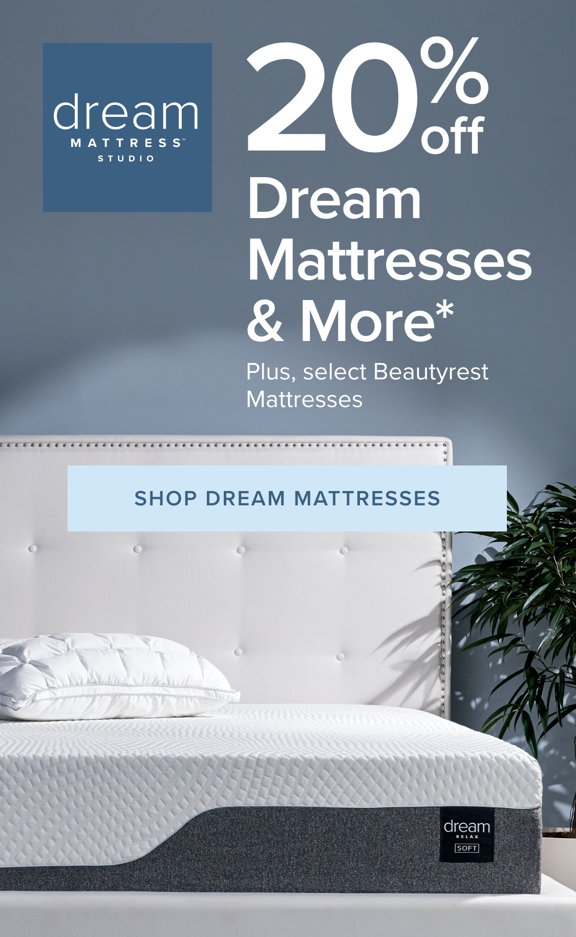 Dream Mattress Studio + Our Personalized Approach to Mattress Shopping 20% off