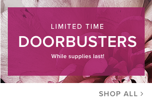 limited time doorbusters while supplies last!